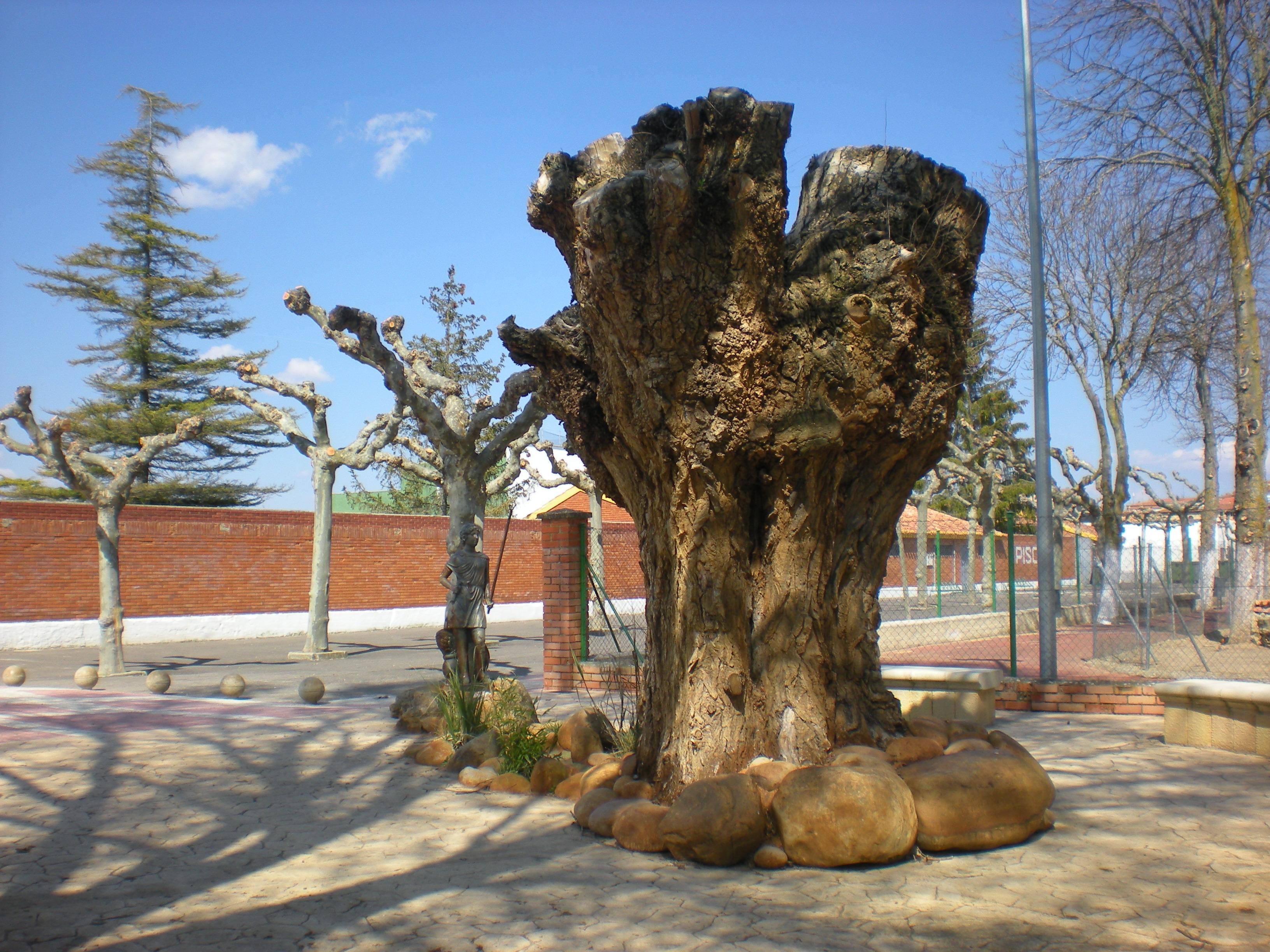 Árbol y estatua de pescadora