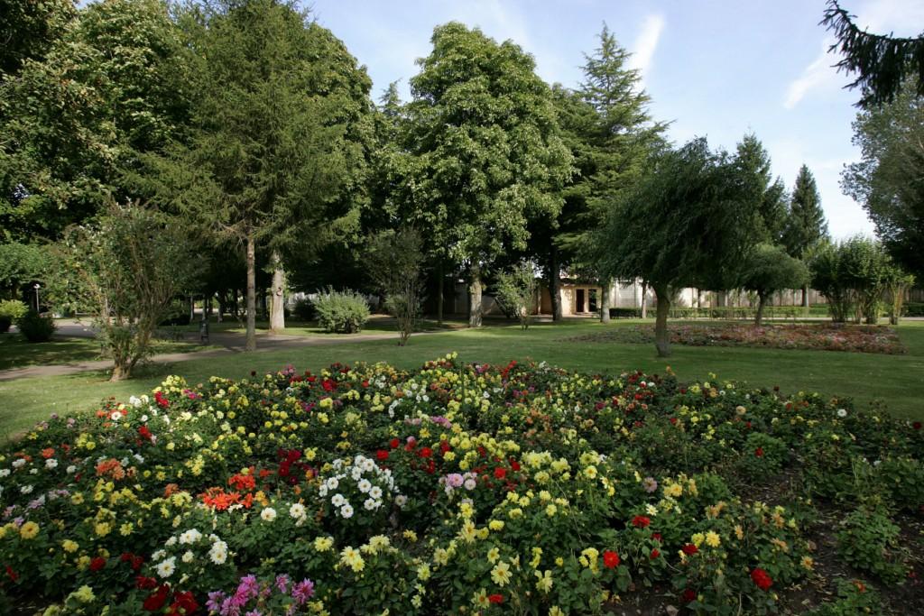 Macizo de flores en el Parque