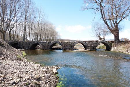 Puente PerdizNestar